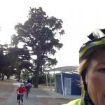 Ride2School1a